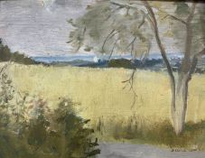 Diana Low (1911-75), oil on board, Summer landscape, signed and dated '68, 16 x 21cmCONDITION: A