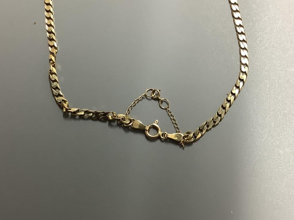 Two 9ct gold chain necklaces, 22.4g (one broken) - Image 2 of 3