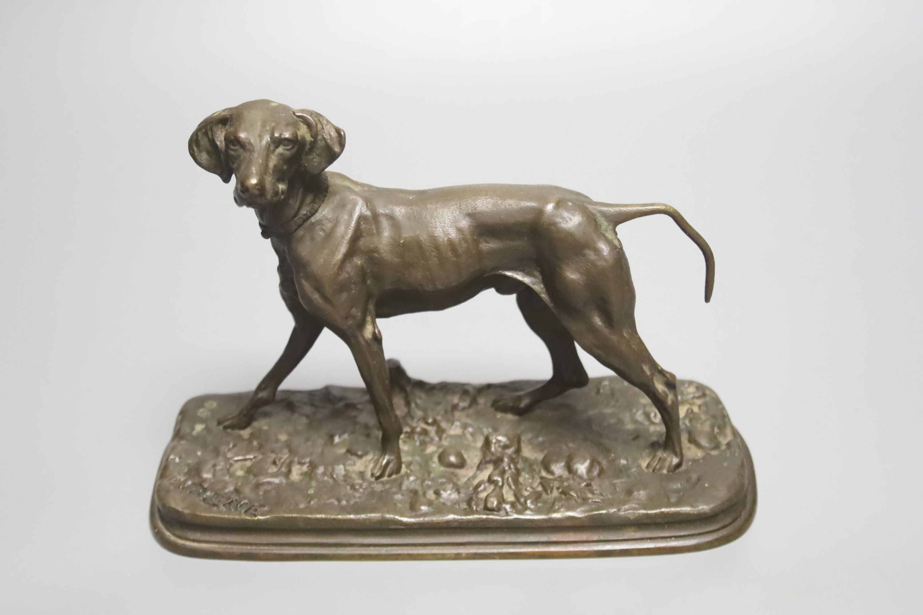 After P. J. Mene, a bronze model of a pointer, signed, on oval naturalistic base, length 19cm