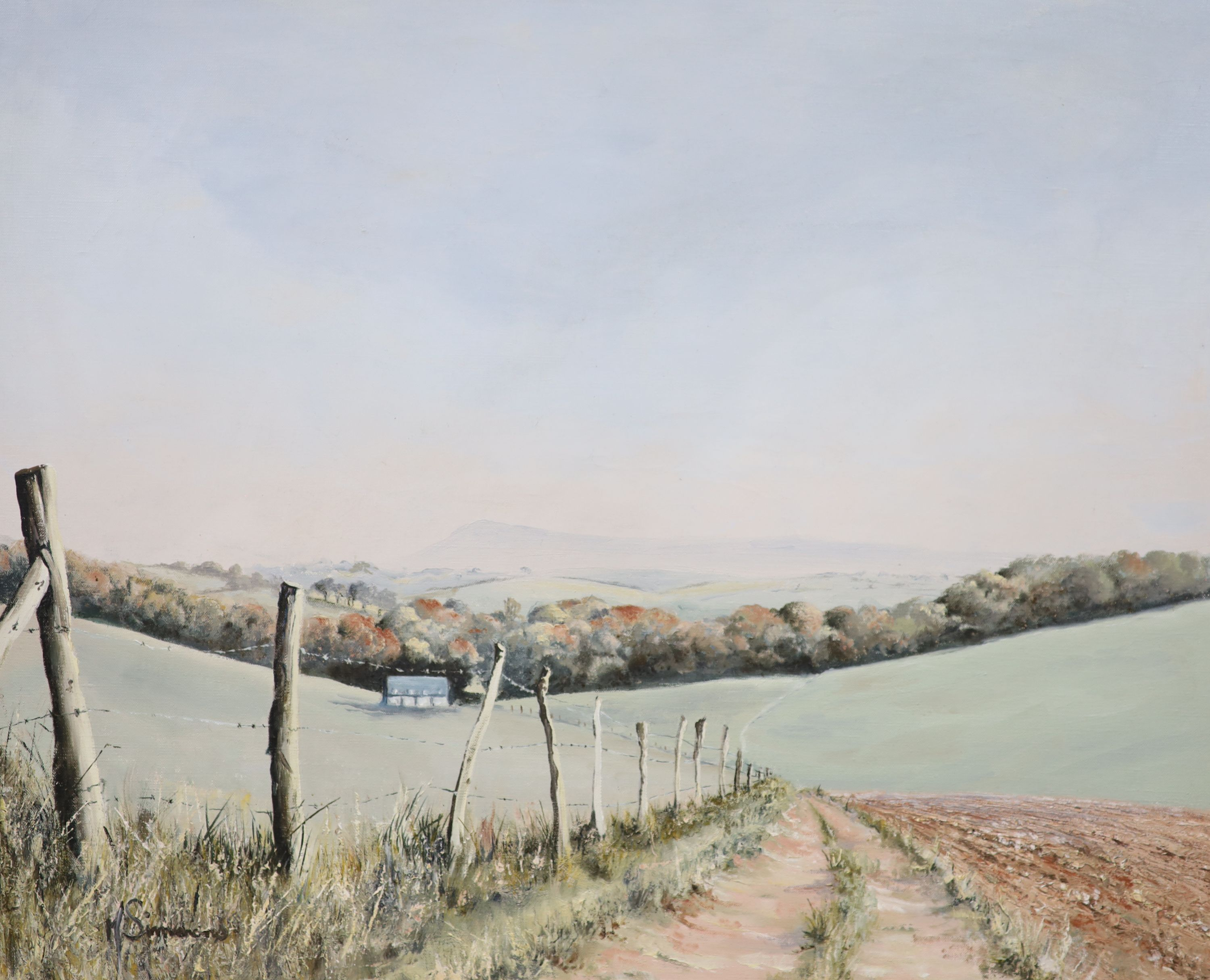 Michael Simmons, oil on canvas, The South Downs Way, signed, 45 x 55cm
