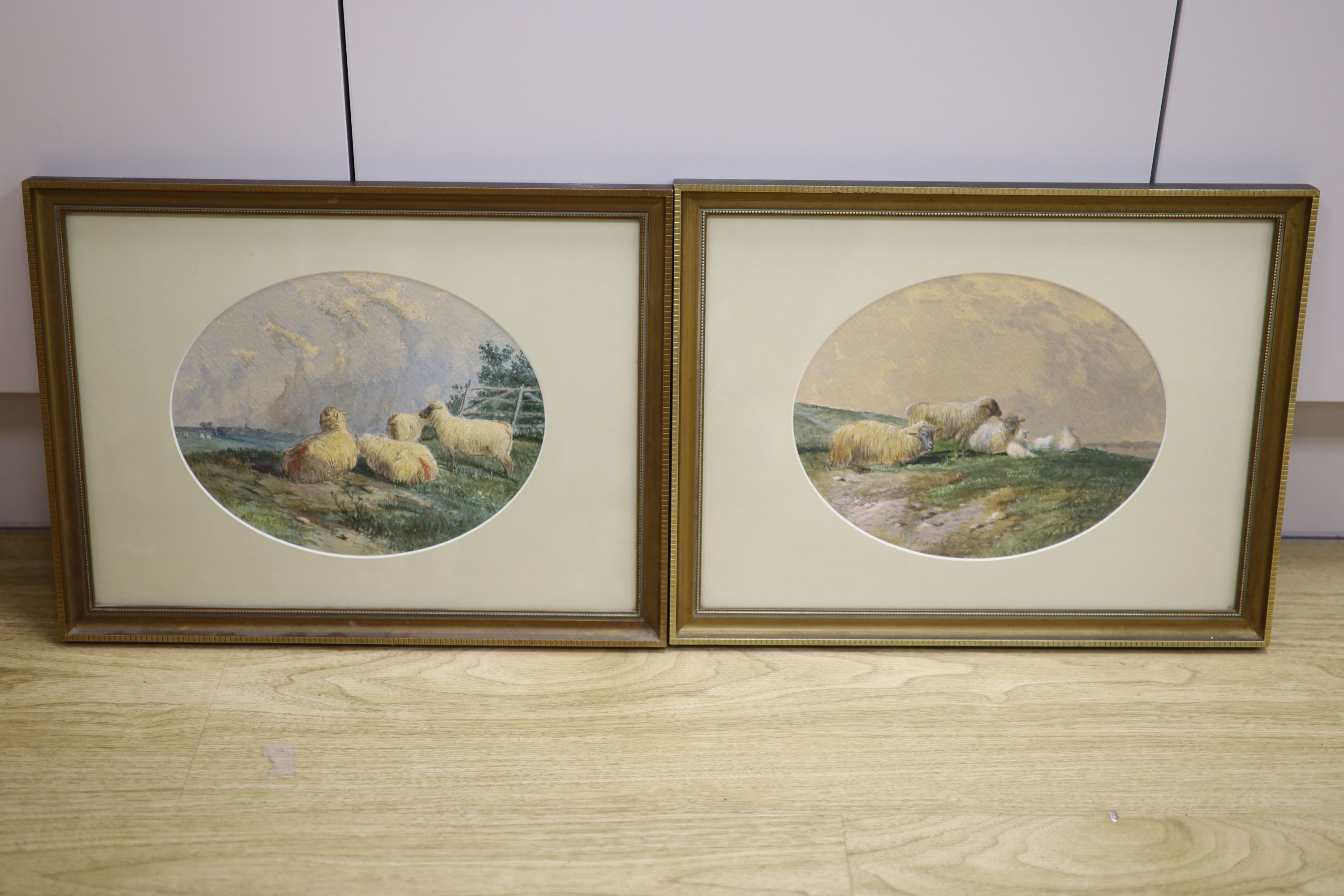 J.D. (19thC), pair of watercolours, Studies of sheep, indistinctly signed, 19 x 24cm