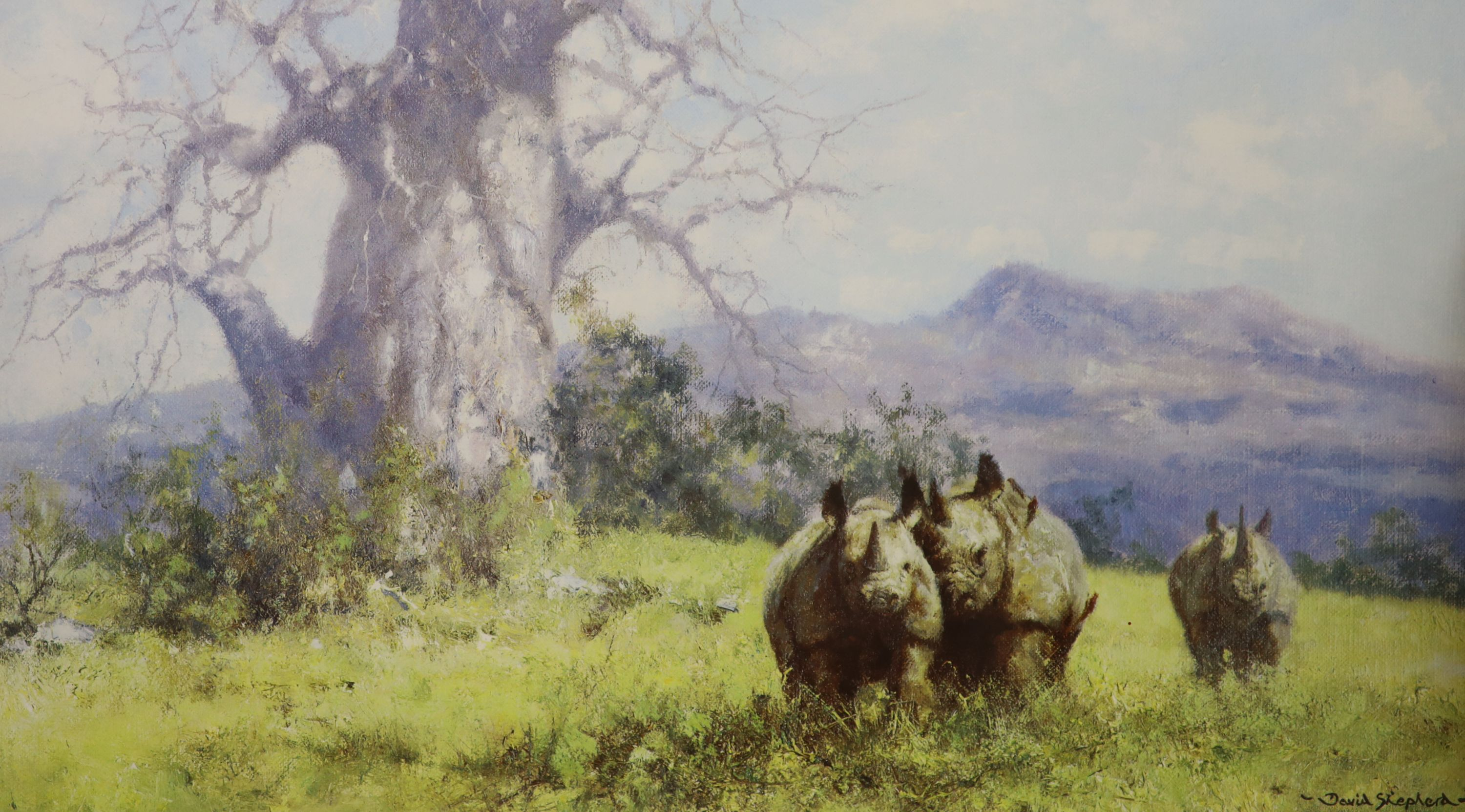Three David Shepherd limited edition prints; Lion Sketch, Tiger Sketch and Rhino Reverie, signed - Image 3 of 4