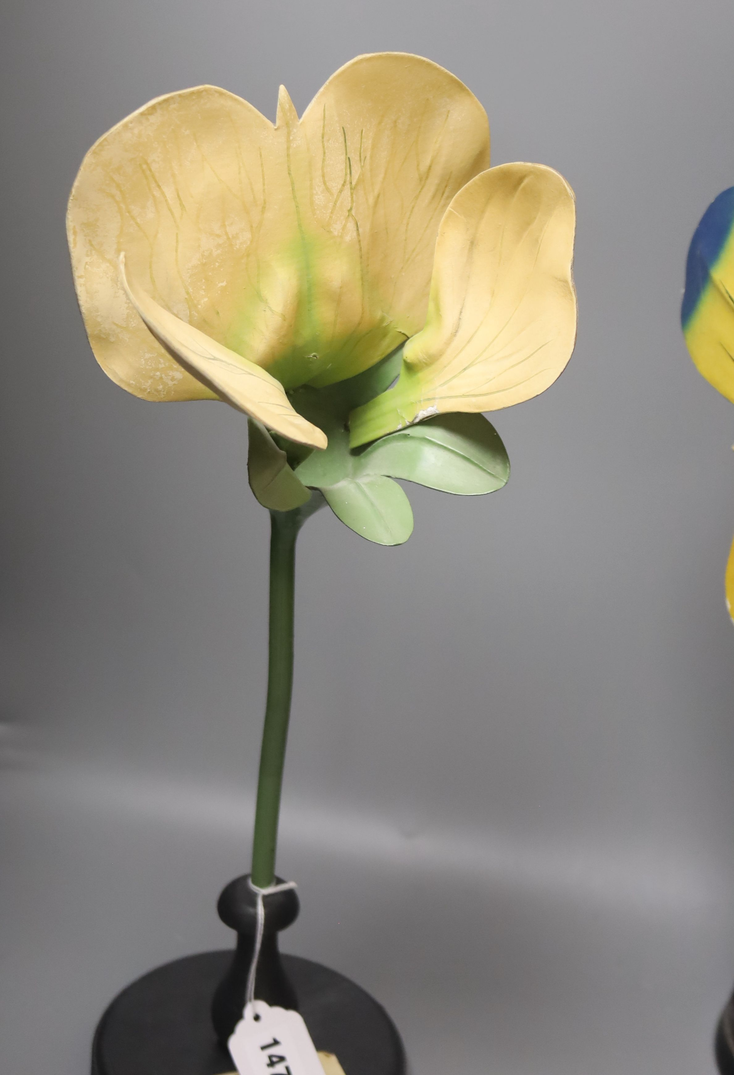 A Group of four 20th century German Brendel botanical specimen / teaching models, Pisum Pois - Image 5 of 5