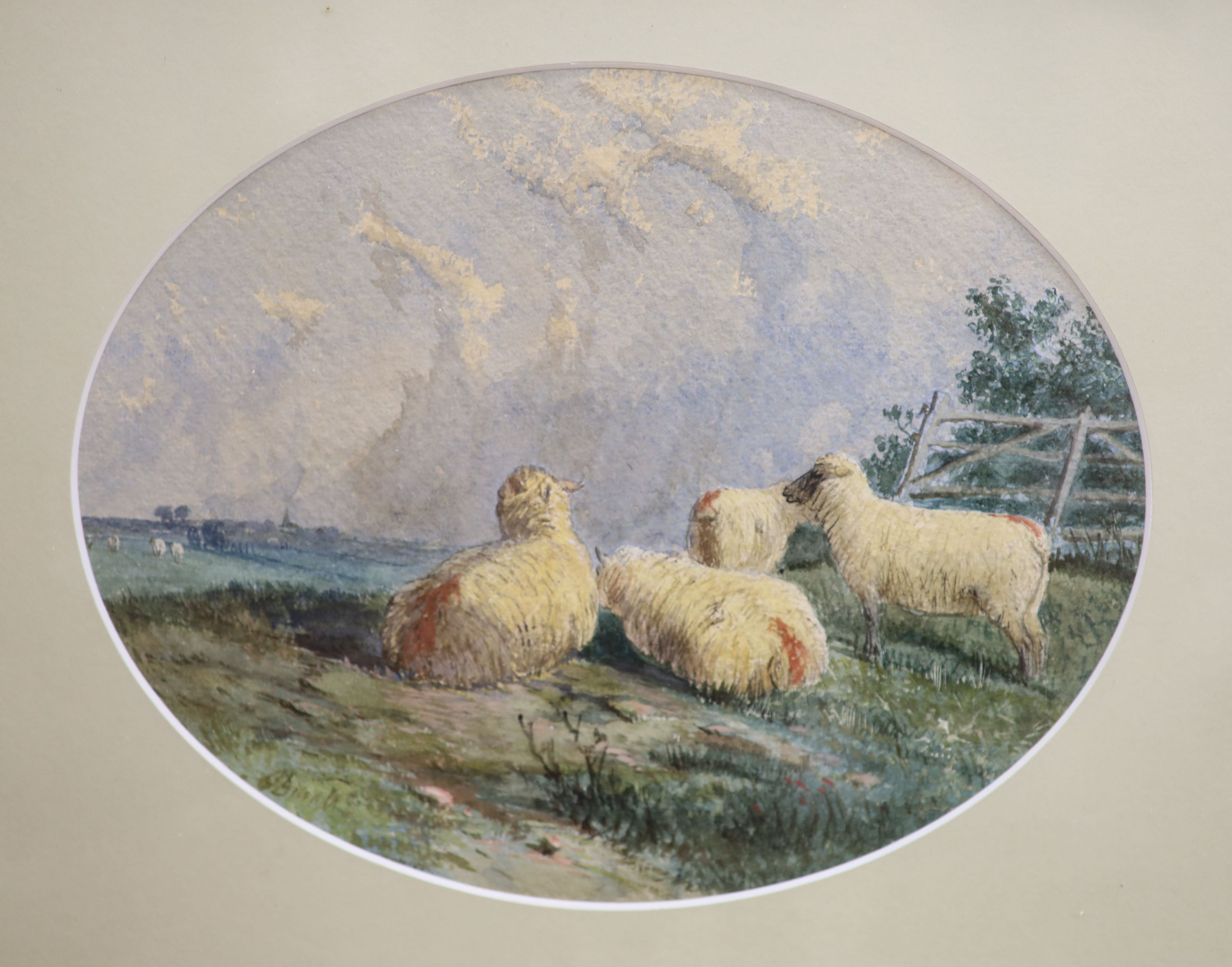 J.D. (19thC), pair of watercolours, Studies of sheep, indistinctly signed, 19 x 24cm - Image 2 of 3