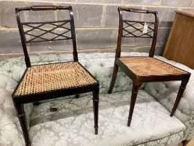 A pair of Regency beech cane seat chairs
