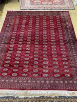 A Bokhara burgundy ground carpet, 284 x 244cm