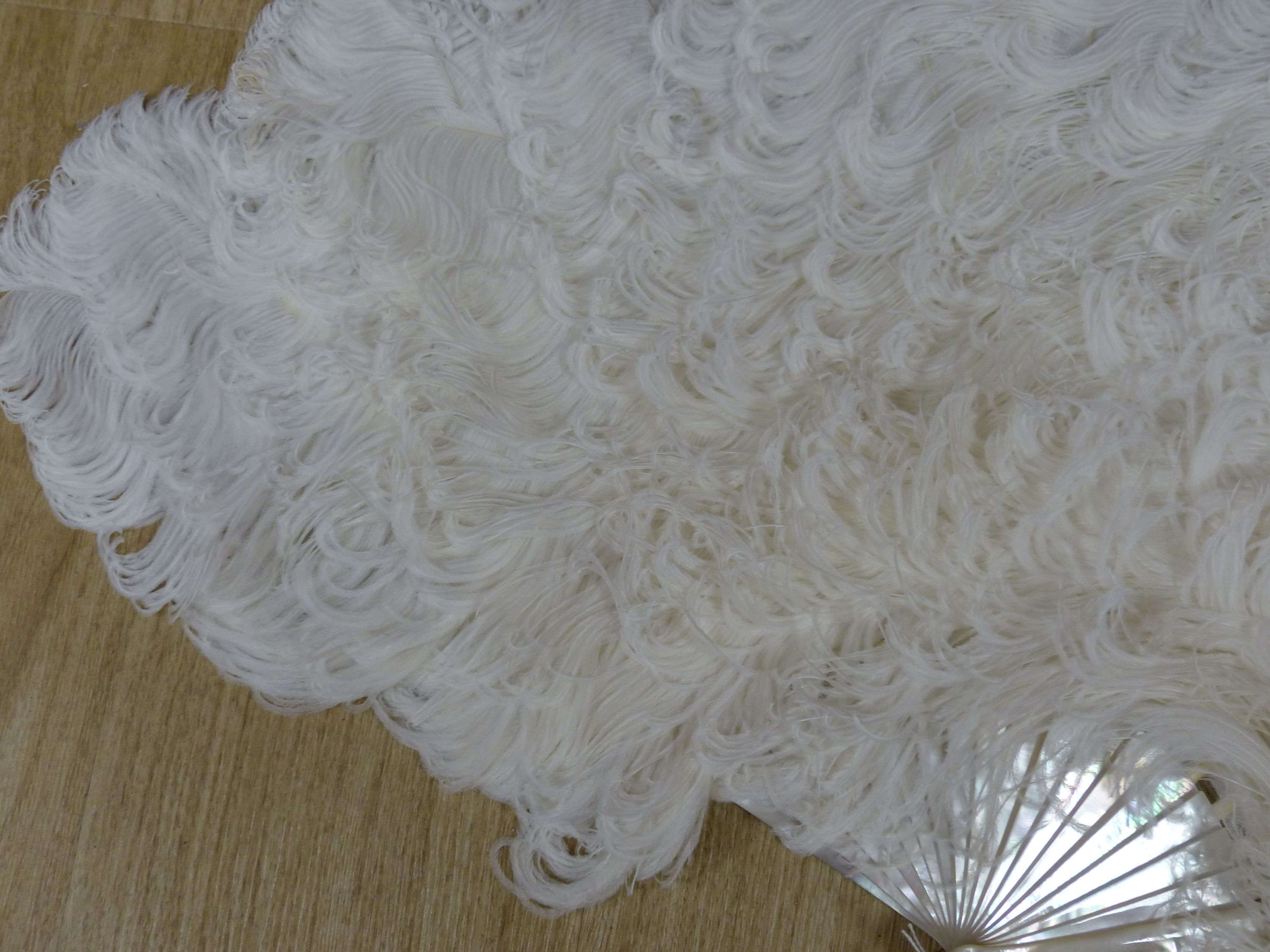A boxed Duvelleroy ostrich feather fan, early 20th century - Image 6 of 6