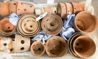 Approximately twenty six terracotta orchid pots, some stamped Sankey's Ltd, in assorted sizes,