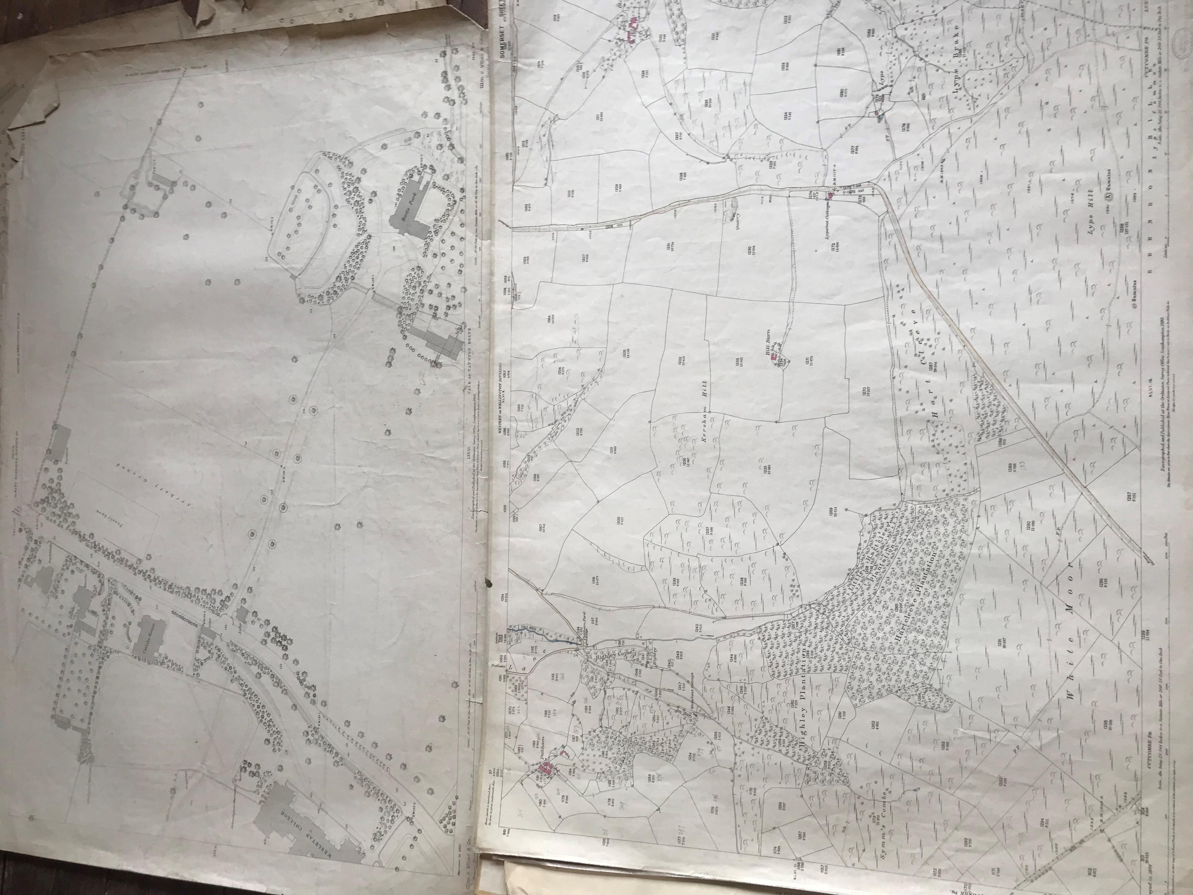THIRTY 1:2500 ORDNANCE SURVEY MAPS featuring Chelston, Ham, Sampford Brett, Wellington, - Image 9 of 16