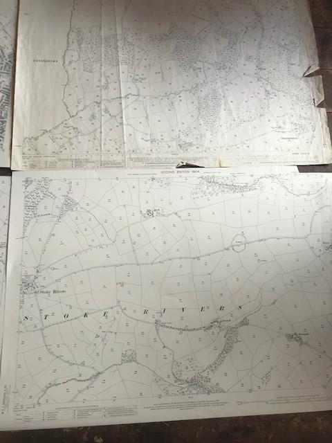 THIRTY 1:2500 ORDNANCE SURVEY MAPS featuring South Petherton, Stoke sub Hambdon, Stocklinch, White - Image 6 of 16