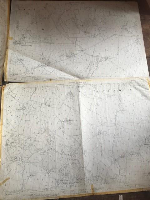 THIRTY 1:2500 ORDNANCE SURVEY MAPS featuring South Petherton, Stoke sub Hambdon, Stocklinch, White - Image 12 of 16