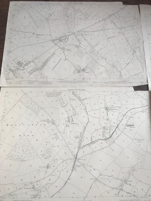 THIRTY 1:2500 ORDNANCE SURVEY MAPS featuring South Petherton, Stoke sub Hambdon, Stocklinch, White - Image 4 of 16