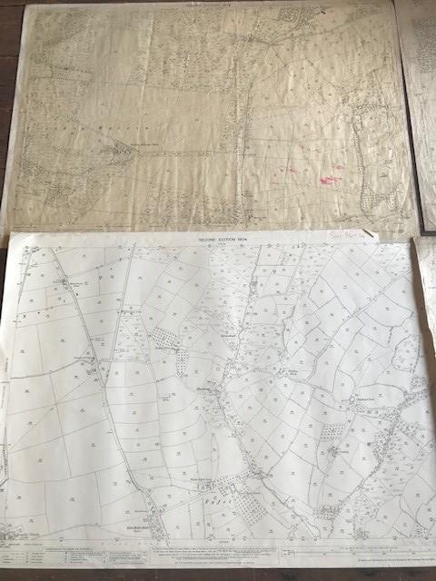 THIRTY 1:2500 ORDNANCE SURVEY MAPS featuring South Petherton, Stoke sub Hambdon, Stocklinch, White - Image 9 of 16