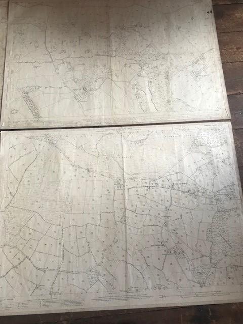THIRTY 1:2500 ORDNANCE SURVEY MAPS featuring South Petherton, Stoke sub Hambdon, Stocklinch, White - Image 10 of 16