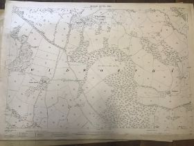 COLLECTION OF THIRTY 1:2500 ORDNANCE SURVEY MAPS covering Hampton; Redgate; Widworthy; North Newton;