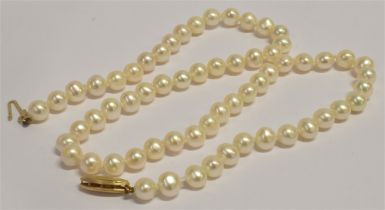A 14KT GOLD CLASP VINTAGE PEARL CHOKER double knotted between each pearl, choker length approx. 38.