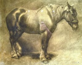 MARGARET BATTAMS (1881-1974) a study of a heavy horse, charcoal and black crayon, signed, 40 x 50cm