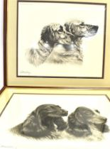 AFTER LEON DANCHIN (FRENCH 1887-1939) Portrait study of English Setters, photolithograph, publ.