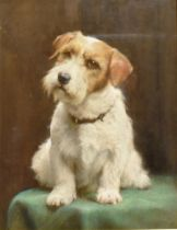 ENGLISH SCHOOL Study of a terrier Pastel on paper 43cm x 33cm