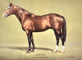 AFTER SUSAN L. CRAWFORD 'Sadler's Wells' Study of the Racehorse, liimited edition colour print No.