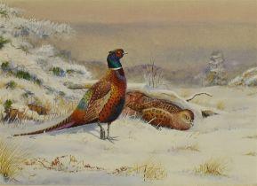 RICHARD ROBJENT (BRITISH b.1937) 'Pheasants' Watercolour Monogrammed lower left, inscribed verso '