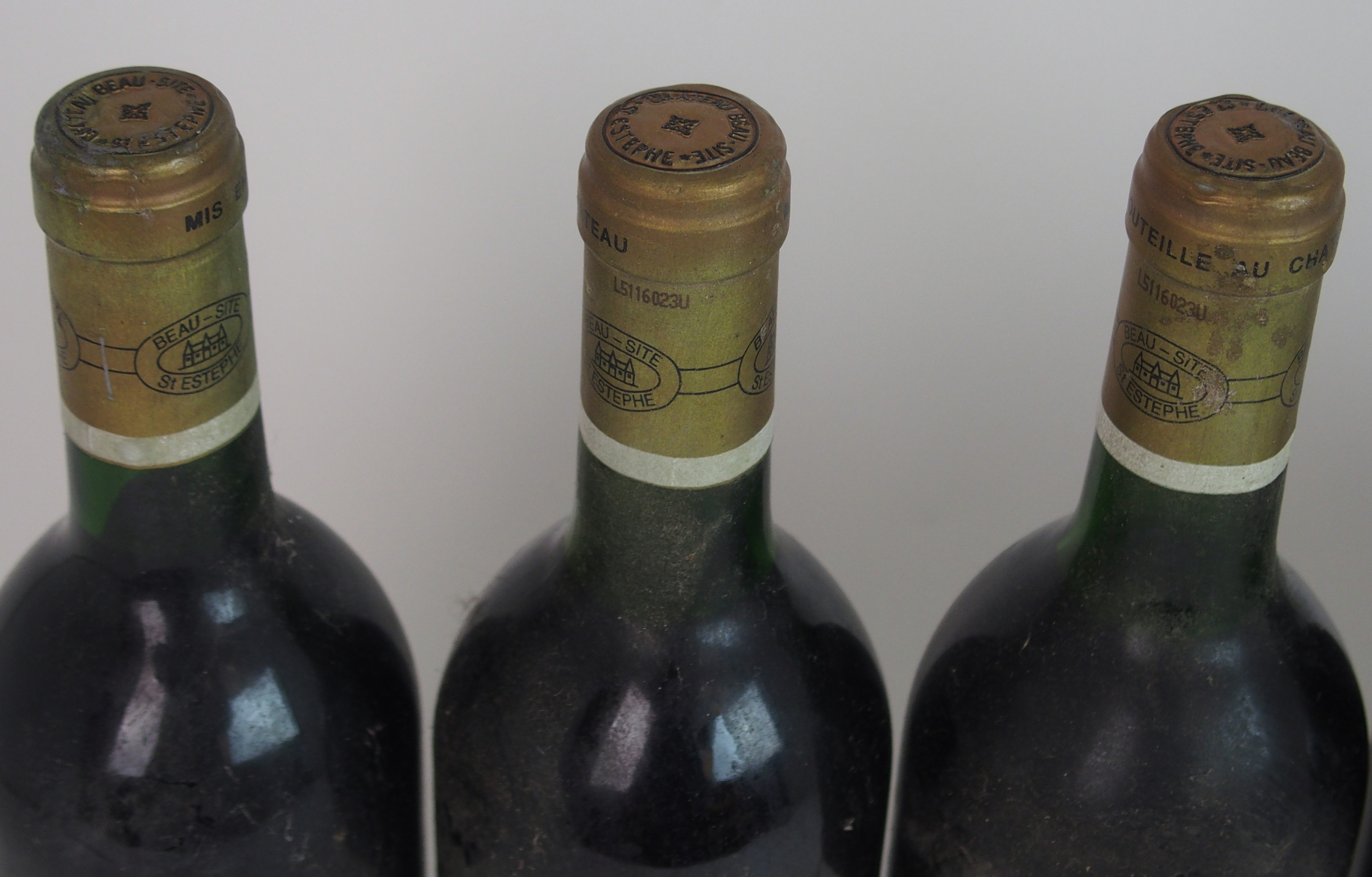 ELEVEN BOTTLES OF CHATEAU BEAU-SITE, SAINT ESTEPHE, 1989 13%vol, 750ml, labels stained and some torn - Image 5 of 8