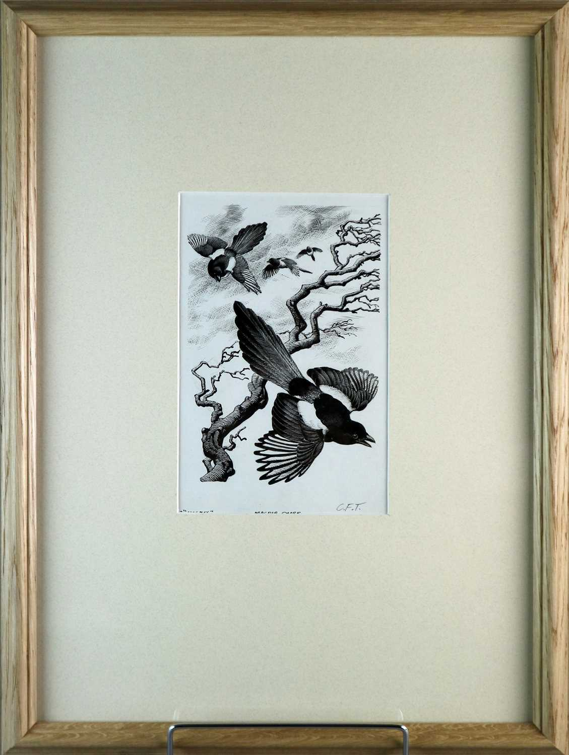 Charles Frederick Tunnicliffe OBE RA (1901-1979) Magpie Chase - Image 2 of 5