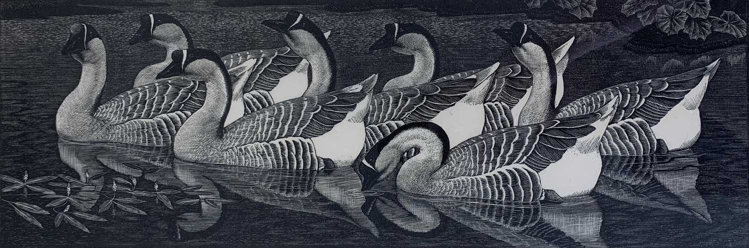 Charles Frederick Tunnicliffe OBE RA (1901-1979) Chinese Geese