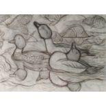 Charles Frederick Tunnicliffe OBE RA (1901-1979) Displaying Goldeneye Ducks