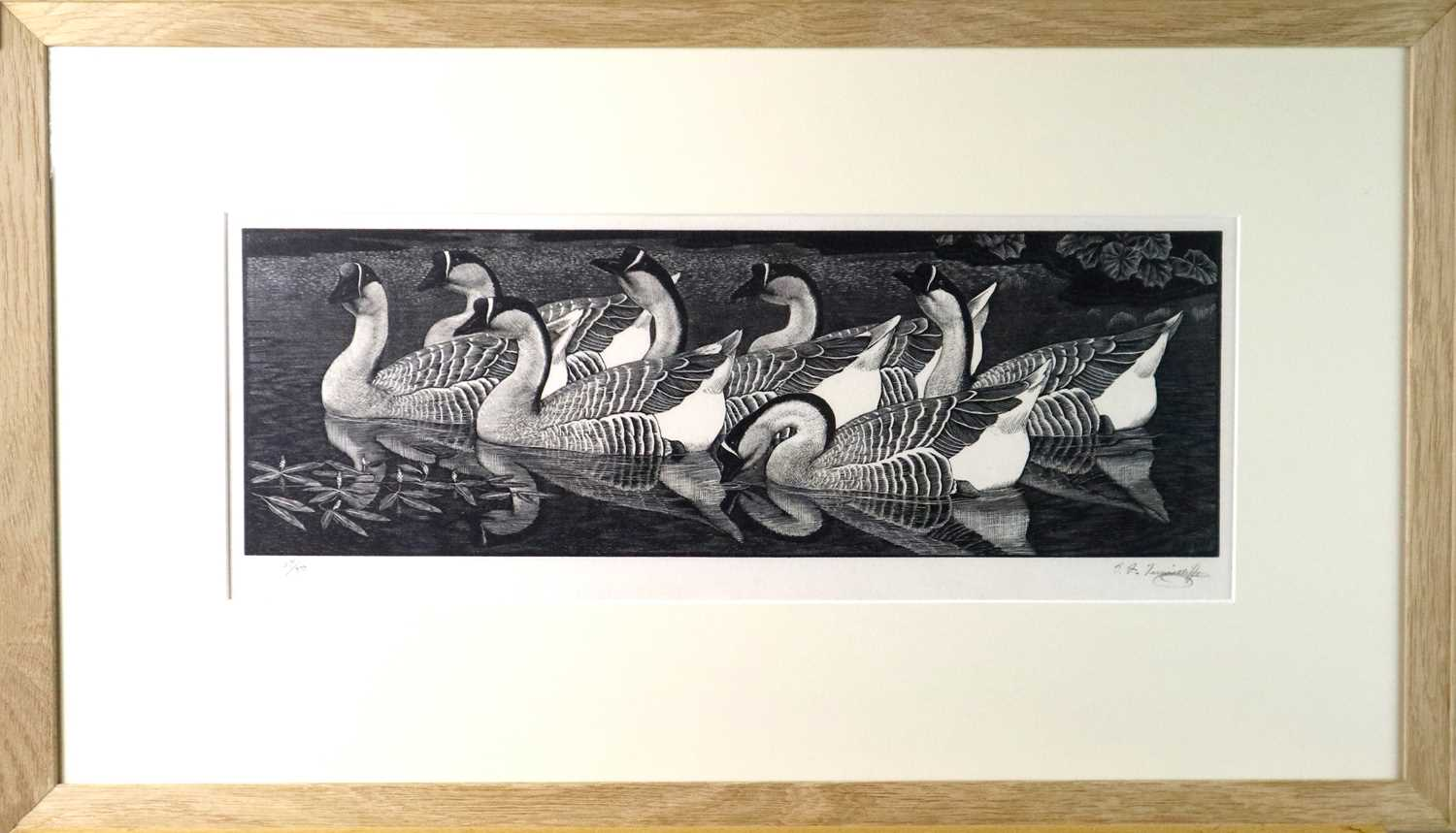 Charles Frederick Tunnicliffe OBE RA (1901-1979) Chinese Geese - Image 2 of 6