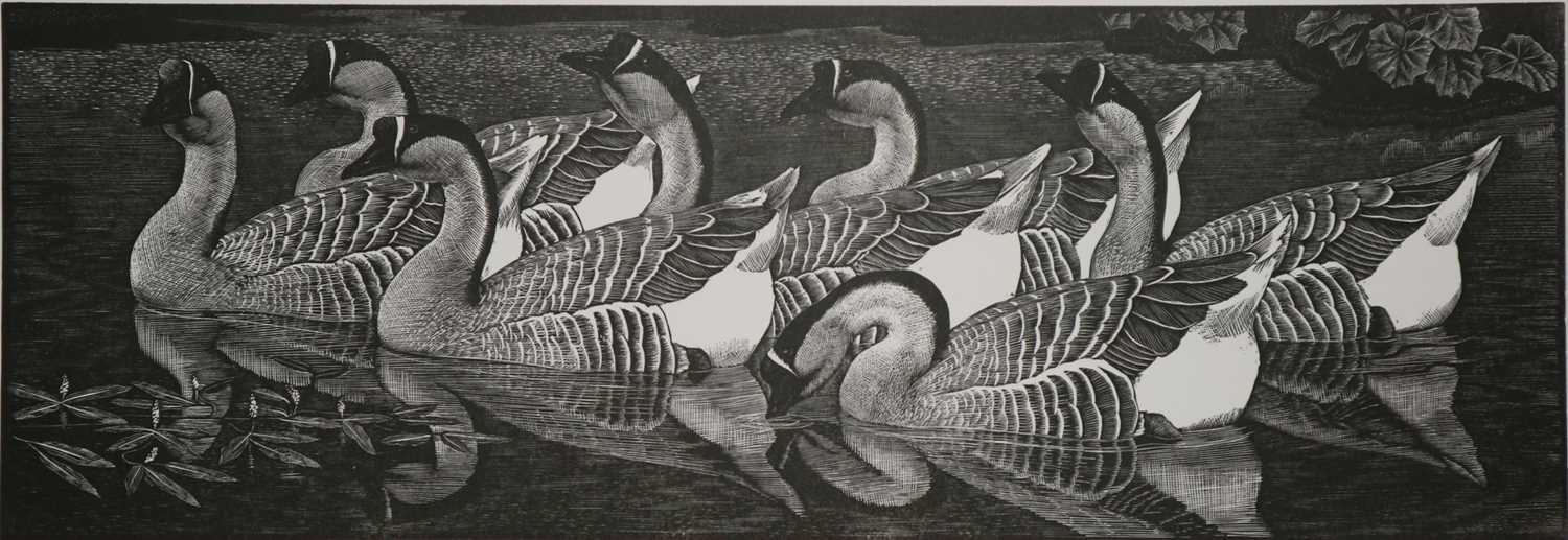 Charles Frederick Tunnicliffe OBE RA (1901-1979) The Memorial Collection Parts I and II - Image 13 of 19