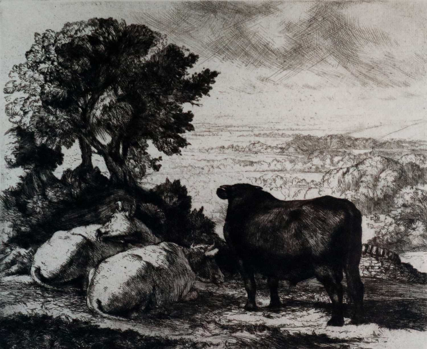 Charles Frederick Tunnicliffe OBE RA (1901-1979) The Cheshire Plain