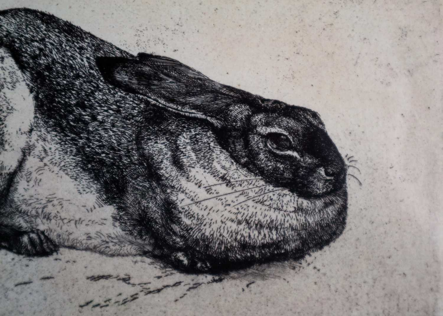 Charles Frederick Tunnicliffe OBE RA(1901-1979) The Sitting Hare - Image 5 of 5