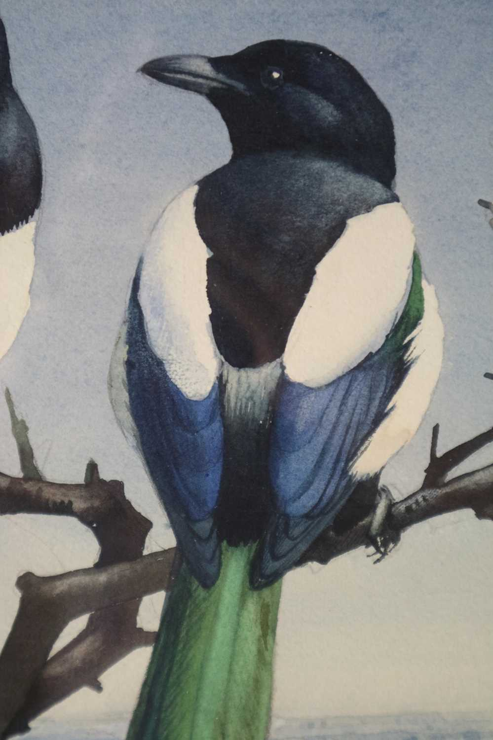 Charles Frederick Tunnicliffe OBE RA(1901-1979) Magpies in Blossom - Image 4 of 5