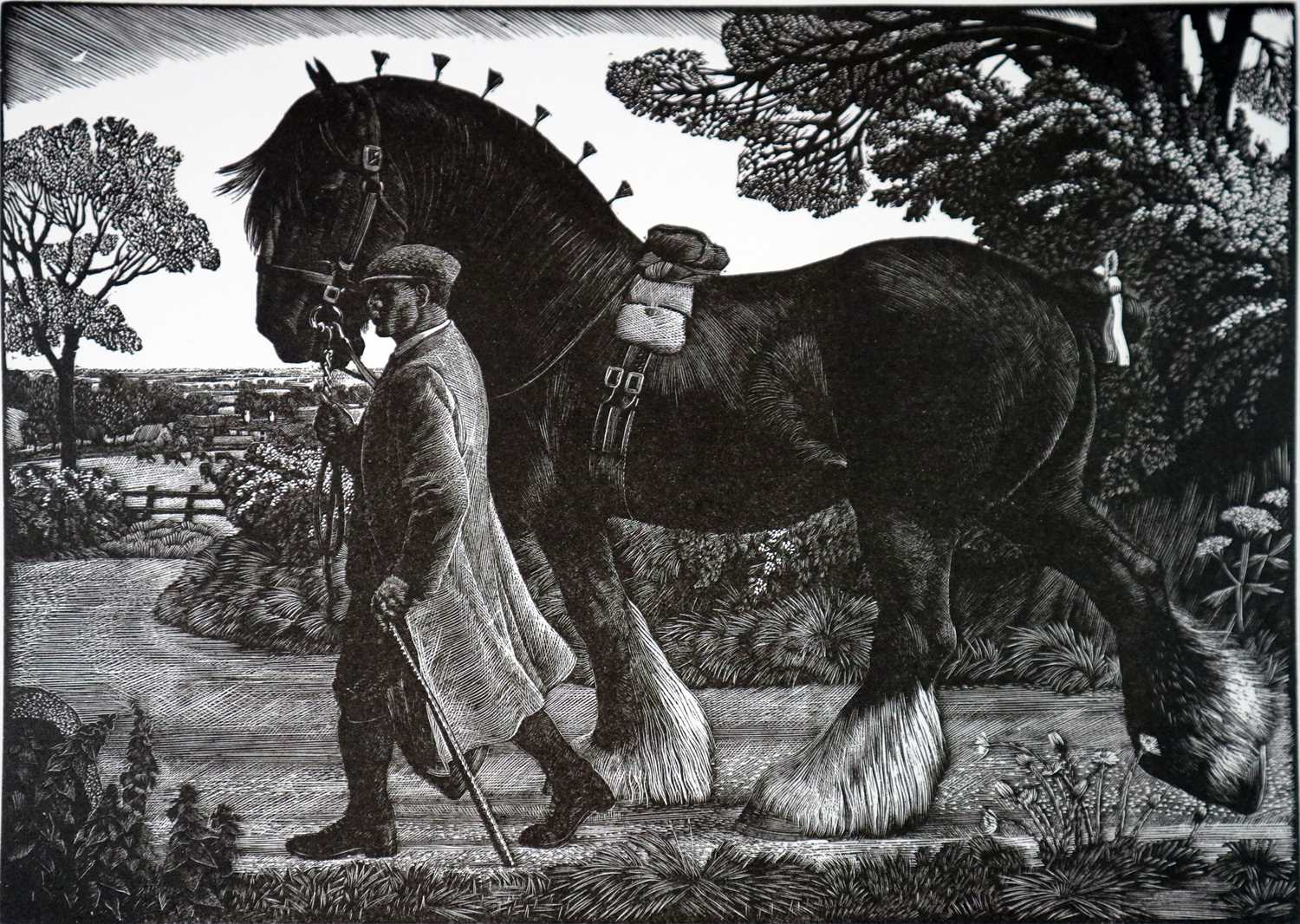 Charles Frederick Tunnicliffe OBE RA (1901-1979) The Memorial Collection Parts I and II - Image 4 of 19