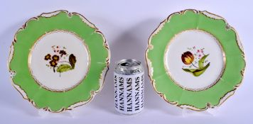 A PAIR OF EARLY 19TH CENTURY DERBY PORCELAIN PLATES painted with flowers under an apple green border