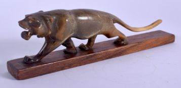 A 19TH CENTURY MIDDLE EASTERN CARVED RHINOCEROS HORN FIGURE OF A TIGER modelled roaming. 20 cm wide.