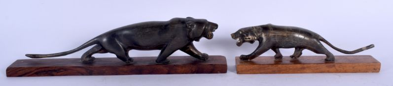 A RARE PAIR OF 19TH CENTURY MIDDLE EASTERN INDIAN CARVED RHINOCEROS HORN PANTHERS modelled as a moth