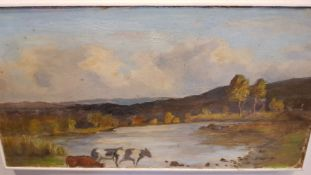 """WILLIAM KEYES MACDONNELL, (IRISH 1888 - 1955), """"CATTLE DRINKING BY A RIVER"""", oil on board, 11.5"""" x"""