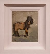 CON CAMPBELL, (IRISH 20/21ST CENTURY), PONY, oil on board, signed lower left, inscribed verso with t