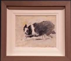 CON CAMPBELL, (IRISH 20/21ST CENTURY), SHEEP DOG, oil on board, signed lower right, 40cm x 35cm appr