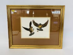 "FOUR FRAMED AND MOUNTED MARTIN SALMON ORNITHOLOGY PRINTS - ""WHINCHATS"", ""OSPREY"","