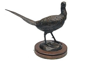 A BRONZE PHEASANT, unsigned, mounted a round oak plinth, measuring approx. 14in. x 18in. x 9in..