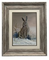 MARK CHESTER (F.W.A.S.) 'EVENING HARE', an original painting signed by the artist, showing an