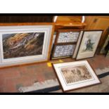 A framed collection of 25 angling Mitchell's Cigar