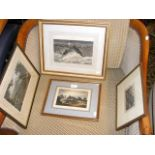 Isle of Wight engravings including Shanklin Chine