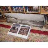 Three canvas prints of coastal scenes