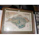 An old geological survey map of The Isle of Wight,