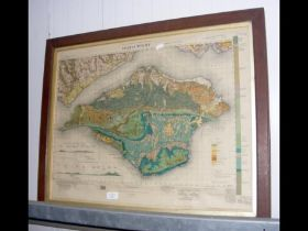 An old geological survey map of The Isle of Wight