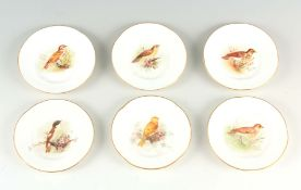 A SET OF SIX EARLY 20TH CENTURY ROYAL WORCESTER CABINET PLATES having handpainted birds to the